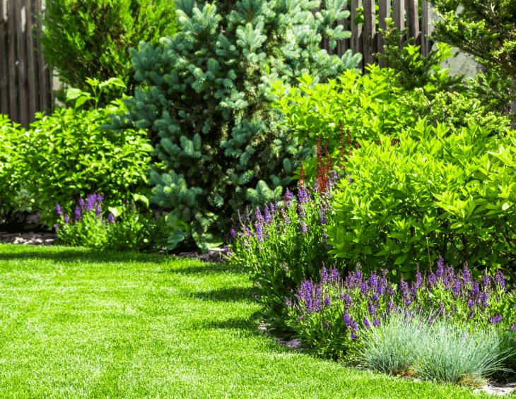 Garden Design Bangor